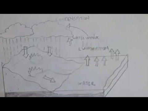 Water cycle diagram for school kids