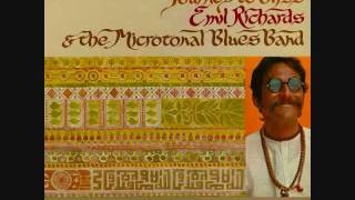Emil Richards & the Microtonal Blues Band - Bliss