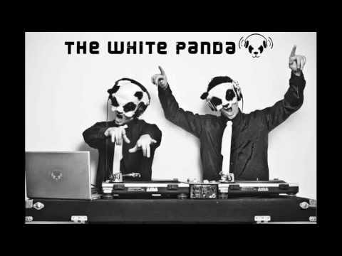 The White Panda - All Knas Everything