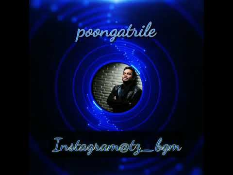 WhatsApp & Instagram bgm poongatrile by arrehma