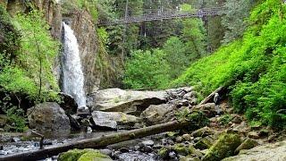 Drift Creek Falls Trail Waterfalls