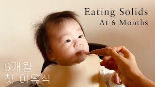 6개월 아기 첫 이유식 | 미국육아 | 6개월 아기