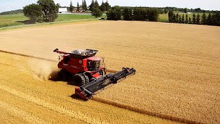 start of the harvest case ih 8230 lexion 560r