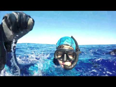 Spearfishing French Polynesia 2016