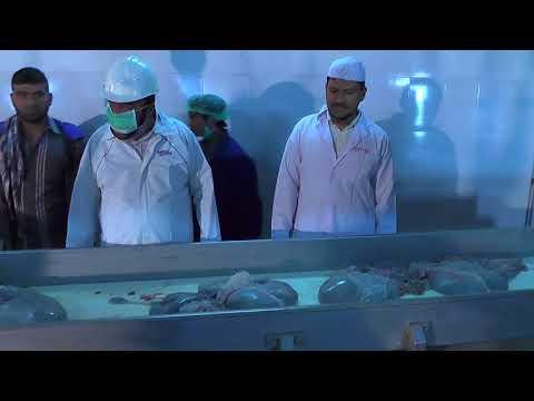 Sikander Meat Shop  Mr Rasheed   Call for Order  9347025415    Telangana Hyderabad Slaughter House