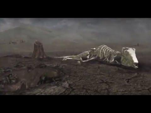 EVOLUTION - EXTINCTION - NOVA DOCUMENTARY - History Discovery Life (full length documentary)