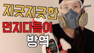 먼지다듬이와의 전쟁2] 벌레방역 / 먼지다듬이 사라져 …