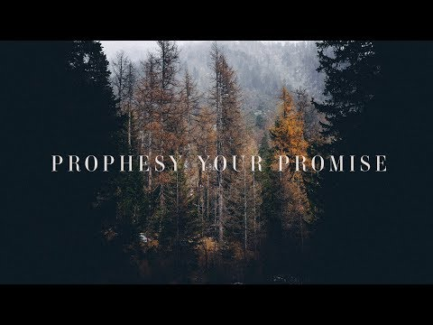 prophesy-your-promise-(lyrics)-~-bryan-&-katie-torwalt