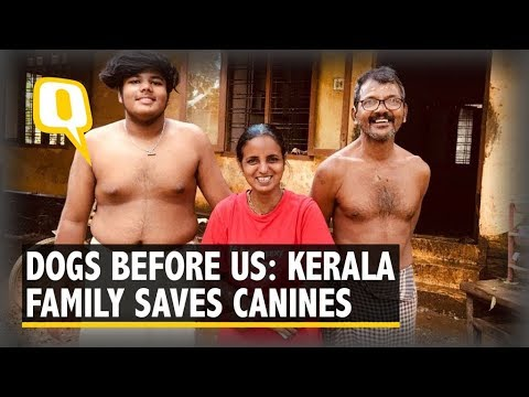 Family Refuses to Leave 27 Dogs in Kerala Floods, Deny Rescue Ops | The Quint