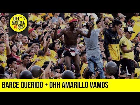 BARCE QUERIDO + OHH AMARILLO VAMOS   BSC 2-2 DELFÍN