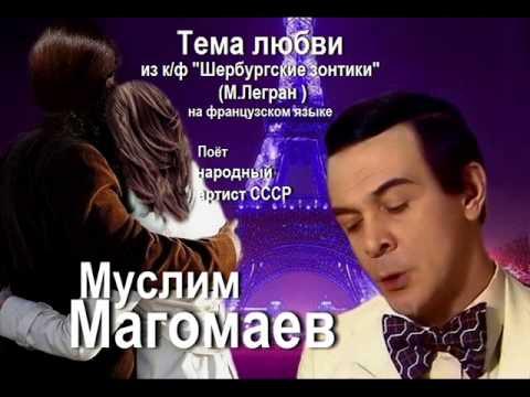 ЗОНТЫ ДЛЯ КАФЕ И САДА (XNEON.RU) - YouTube