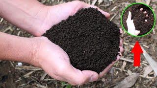 Como Preparar Substrato para Plantio