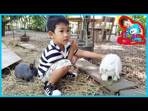 เที่ยว ธรรมชาติ น้องบีม | ให้อาหารกระต่าย เที่ยวราชบุรี รสธรรมชาติ