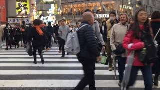 How to Spend 4 Days in Tokyo
