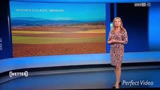 Siegfried Schlager Orf Frühlingsgruss aus dem Südbgld im Fernsehen