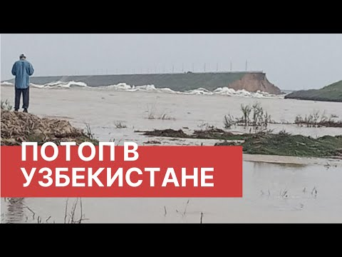 Прорыв дамбы в Узбекистане. Видео. Потоп в Узбекстиане из-за прорыва дамбы водохранилища