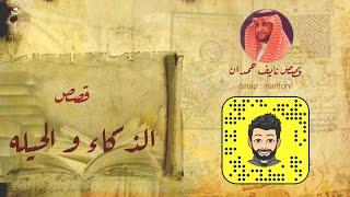 نآيف حمدان- قصص عن الذكاء والحيله