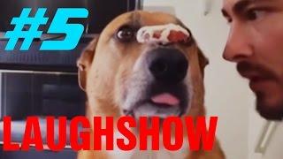 LaughShow | Самое Смешное Видео #5
