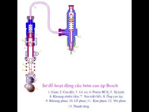 How to a bosch pump work