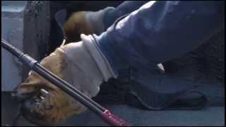видео Ремонт мягкой кровли своими руками: технология, оборудование и материалы