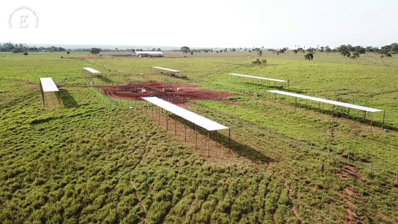Construção de Sombrite na Fazenda Cabeceira do Prata