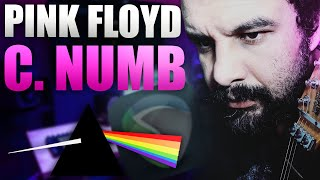 Confortably Numb - only solo - cort M600
