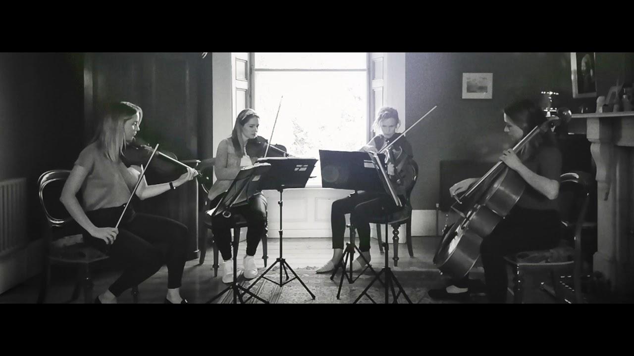 Leinster String Quartet Video 7