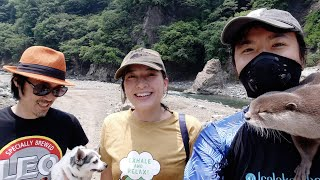 Camping with Instagrammer, Yoshimi Lynn and Omichan at Noro Lodge[Otter life Day 288]【カワウソアティとにゃん先輩】