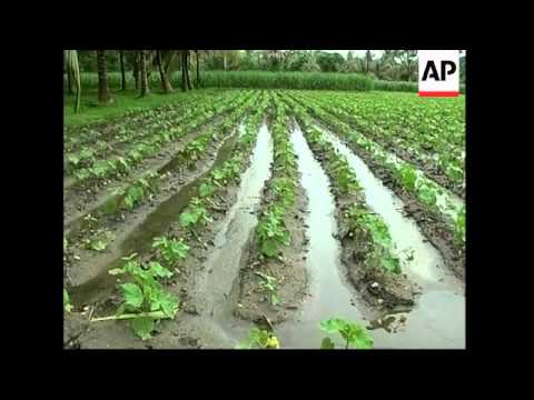 Organic farming is gaining popularity in Kerala, India