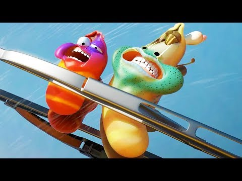 LARVA - TAXI | Cartoon Movie | Cartoons For Children | Larva Cartoon | LARVA Official