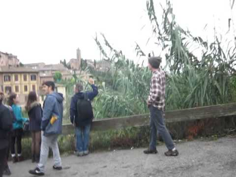 Art&Society Course, Alternative walking activity clip, 2