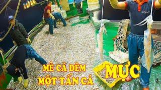 Gambar cover Cả Tàu Đều Vui Khi Kéo Mẻ Chài Trúng Một Tấn Cá & Mực - Đánh Bắt Hải Sản/ Catch Seafood #125