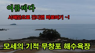 7~8월 국내여행추천 /서해안해수욕장중에최고/무창포해수…