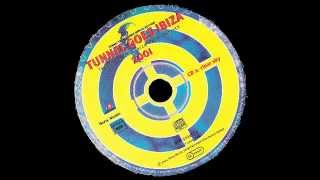 Tunnel Goes Ibiza 2001(CD2)