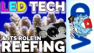 LED Tech & Its Role in Reefing! | Big Al's
