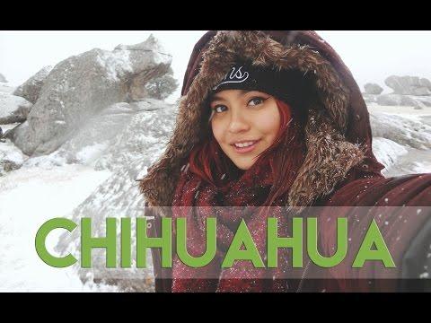¡VIAJE EN TREN! - EL CHEPE/MEXICO | IlseBeladelli*