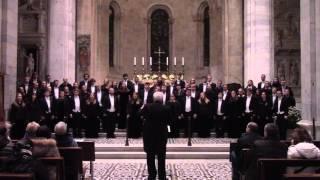 Prayer of St. Francis - Robert Delgado