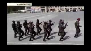 Танцующих с автоматами африканцев из Новосибирска заподозрили в экстремизме