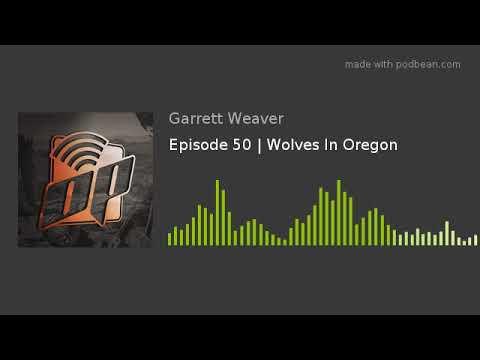Episode 50 | Wolves In Oregon