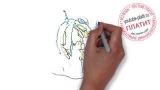 Черепашки Ниндзя 2014  Смотреть онлайн как нарисовать черепашек ниндзя(ЧЕРЕПАШКИ НИНДЗЯ 2014. Как правильно нарисовать персонажей мультфильма черепашки ниндзя онлайн поэтапно...., 2014-09-23T14:54:02.000Z)