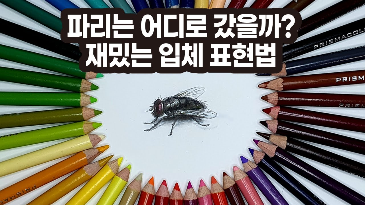 Drawing a flying fly. Surprise, living picture. 살아있는 3D그림 / Wow Drawing 뚱카롱TV