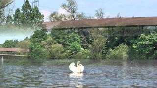 Fulda Kanutour vom Campingplatz Büchenwerra nach Kassel - Gärtnerbrücke 2016