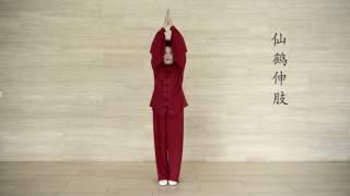 九禽文戲 Nine Animals Hui Chun Gong Madame Mok Chong Meng