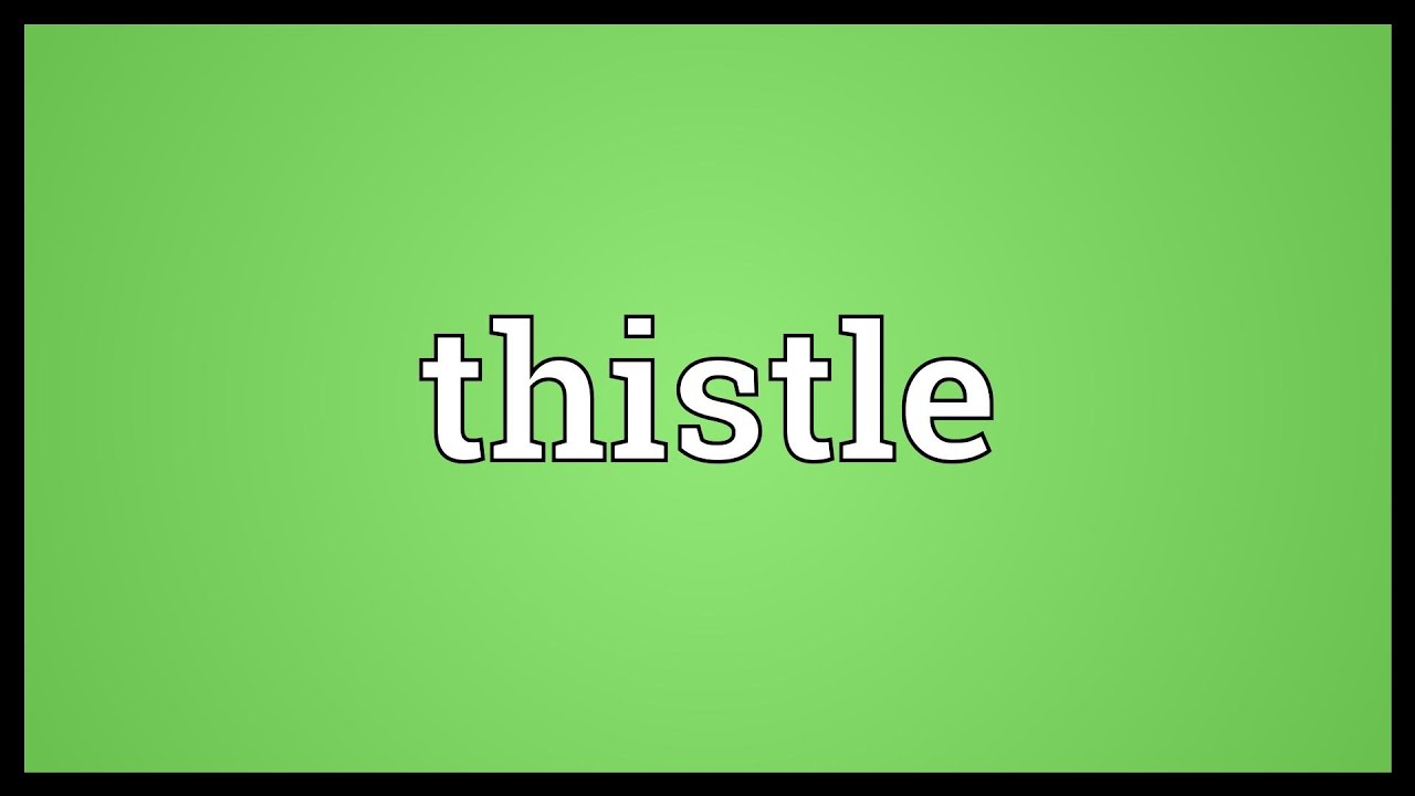 Thistle Meaning - YouTube