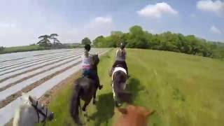 Country Canter Cornwall