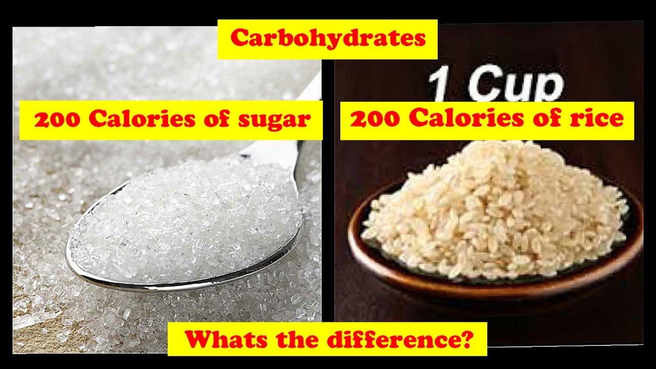 rice vs bread lose weight