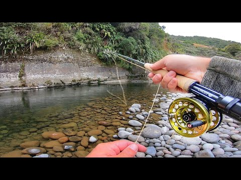 Fly Fishing for wild New Zealand Trout in Amazing Backcountry Scenery