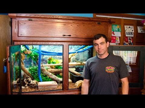 Brian Meier's Chinese Water Dragon Cage