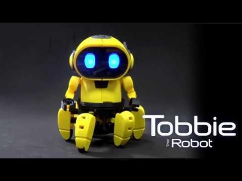 Intelligent Robot Tobbie CIC21 893
