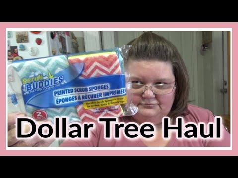 Dollar Tree Haul